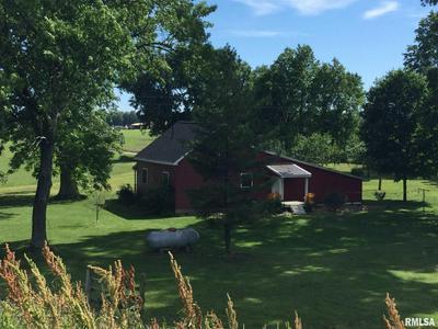 1290 CLEAR CREEK LEVEE RD, Jonesboro, IL 62952 - Photo 2