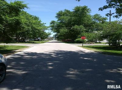 585 MILLER ST, Bushnell, IL 61422 - Photo 2