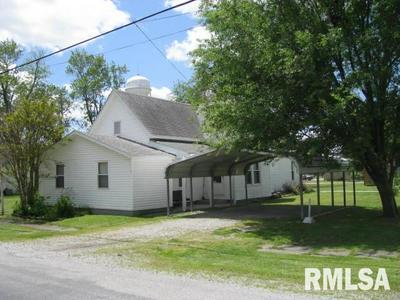 119 N SEBA ST, Hurst, IL 62949 - Photo 2