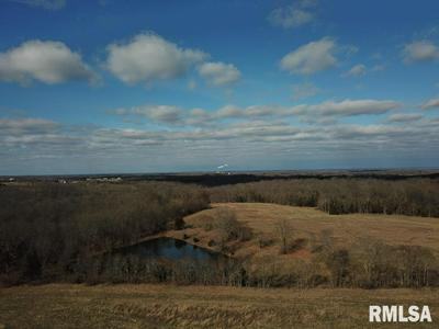 000 DEER RIDGE ROAD, Goreville, IL 62939 - Photo 2
