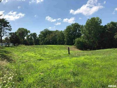 0 N EVANS MILL, Princeville, IL 61559 - Photo 1