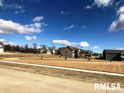 1729 WISHING WELL LN, De Witt, IA 52742 - Photo 2