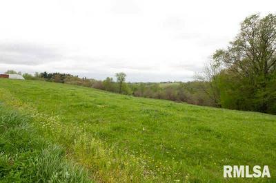 0 BRIAR BLUFF ROAD, Coal Valley, IL 61240 - Photo 1