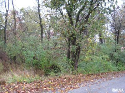 LOT 1039 & 1040 JOHN ABLE DRIVE, Goreville, IL 62939 - Photo 1