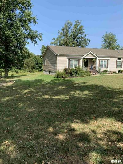 20433 NUMBER 9 BLACKTOP ROAD, Thompsonville, IL 62890 - Photo 2