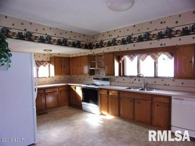 411 W RAY AVE, CHRISTOPHER, IL 62822 - Photo 2