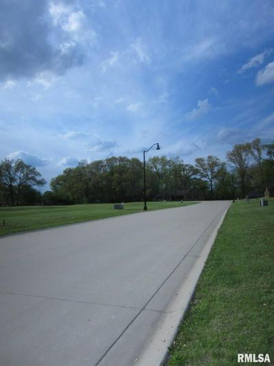 200 WASHINGTON PL, Riverton, IL 62561 - Photo 2