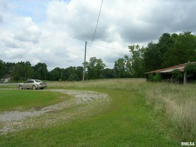 12530 US HIGHWAY 45 N, Ozark, IL 62972 - Photo 2