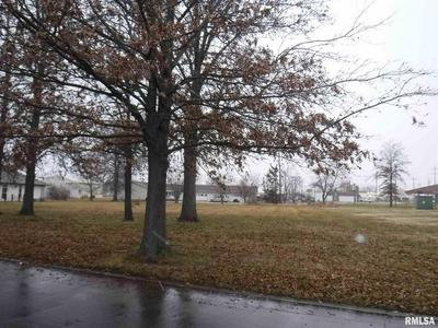 LOT 4 CROSS CREEK BOULEVARD, Salem, IL 62881 - Photo 1