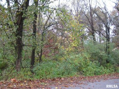 LOT 1039 & 1040 JOHN ABLE DRIVE, Goreville, IL 62939 - Photo 2