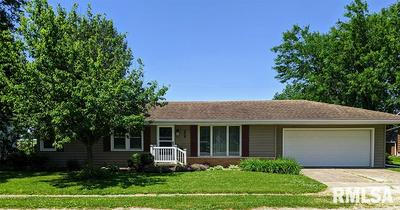 208 N 3RD ST, Wyoming, IL 61491 - Photo 1