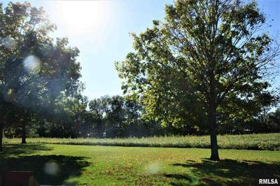 1409 N TOWN AVE LOT 2, Princeville, IL 61559 - Photo 1