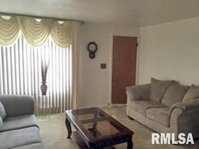 2211 W ANTOINETTE ST, Peoria, IL 61605 - Photo 2