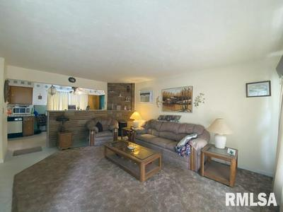 20 N 13TH AVE, Canton, IL 61520 - Photo 2
