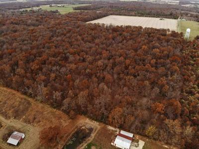 000 BAILEY, Alma, IL 62801 - Photo 2