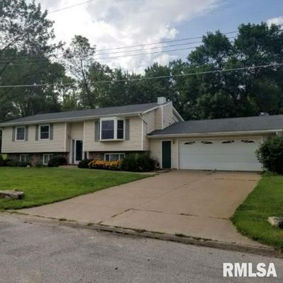 853 2ND AVE W, Andalusia, IL 61232 - Photo 1
