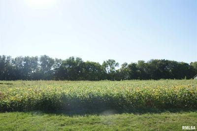 1409 N TOWN AVE LOT 3, Princeville, IL 61559 - Photo 1
