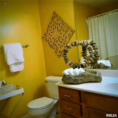 11217 N OAKWOOD DR UNIT 68, Peoria, IL 61615 - Photo 2