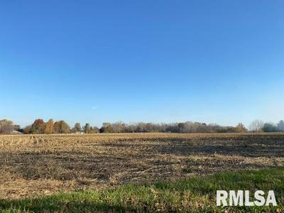 FOREST LANE, Petersburg, IL 62675 - Photo 1