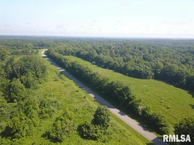 000 CREAL SPRINGS ROAD, Tunnel Hill, IL 62972 - Photo 2