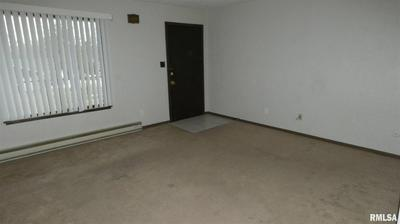 3116 N MOLLECK DR APT A, Peoria, IL 61604 - Photo 2