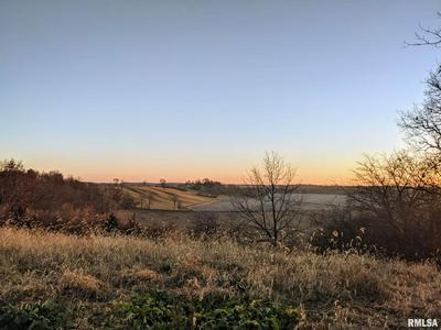 27211 TOWNLINE RD, Tremont, IL 61568 - Photo 2