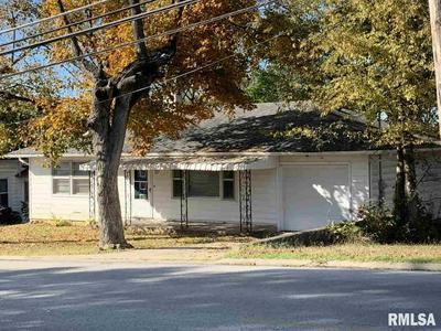 707 E HEACOCK ST, Jonesboro, IL 62952 - Photo 1