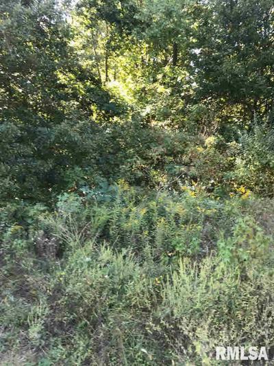 3 LOGAN RUN RD, Murphysboro, IL 62966 - Photo 1