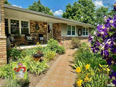 113 PEACHTREE LN, Germantown Hills, IL 61548 - Photo 1