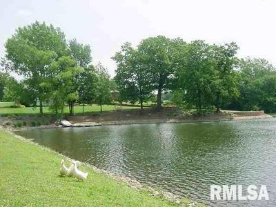 66 RUSTIC LAKE ESTATES, Colona, IL 61241 - Photo 1