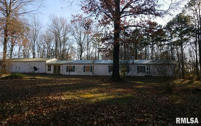 6235 BRIER CREEK RD, Stonefort, IL 62987 - Photo 1