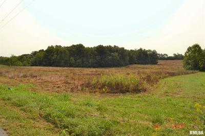 MOCABY ROAD, Thompsonville, IL 62890 - Photo 2