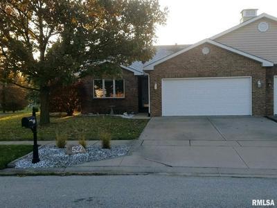 522 BURBERRY LN, Rochester, IL 62563 - Photo 1
