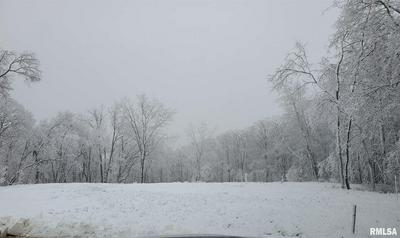 117 ROSEMARY LN, Germantown Hills, IL 61548 - Photo 1