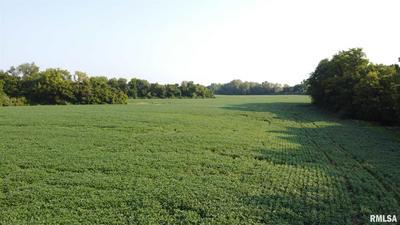 000 WINSLOW ROAD, Belleville, IL 62223 - Photo 2