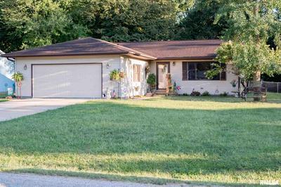 976 E WASHINGTON ST, Riverton, IL 62561 - Photo 1