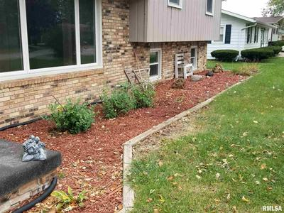 117 POPLAR ST, Canton, IL 61520 - Photo 2