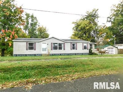 500 W 5TH ST, Metropolis, IL 62960 - Photo 1