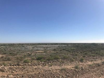 TRACT 50 ANTELOPE SPRINGS, Hagerman, NM 88232 - Photo 2