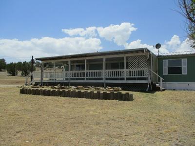 100 LONG RD, Capitan, NM 88316 - Photo 1