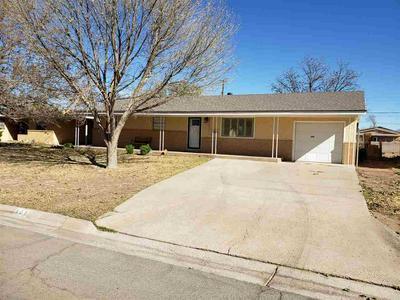 505 S MISSISSIPPI AVE, Roswell, NM 88203 - Photo 2