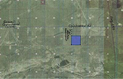 00 1/2 MI S FROM CHICKASAW RD, Hagerman, NM 88232 - Photo 1