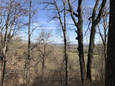 LOT 13 VALLEY RD, Hardy, VA 24101 - Photo 2