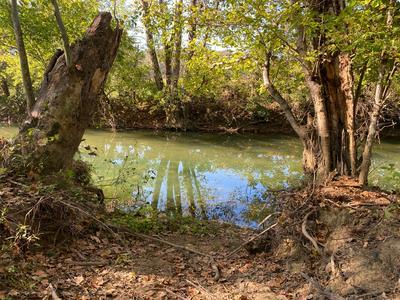 0 KYLES MILL RD, Buchanan, VA 24066 - Photo 2