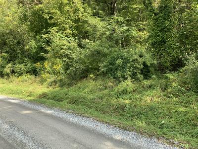 0 SOLITUDE RD, Buchanan, VA 24066 - Photo 1