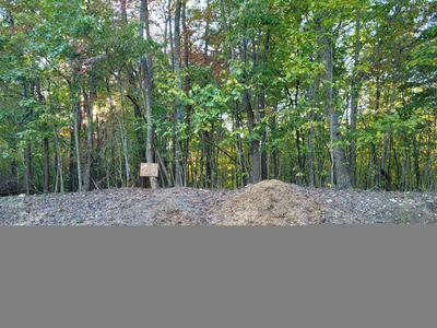 LOT 26 JEWEL TRL, Moneta, VA 24121 - Photo 1