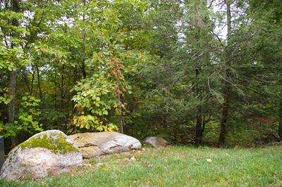 0 KING BROTHERS RD, Bent Mountain, VA 24059 - Photo 2