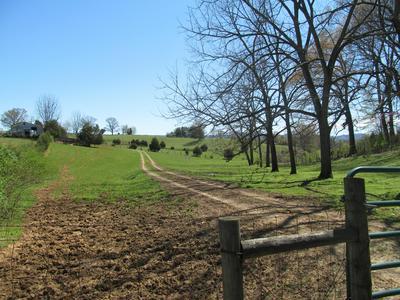 2494 BEAVER DAM RD, Buchanan, VA 24066 - Photo 2