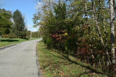 0 LIZARD RIDGE RD, Bedford, VA 24523 - Photo 2