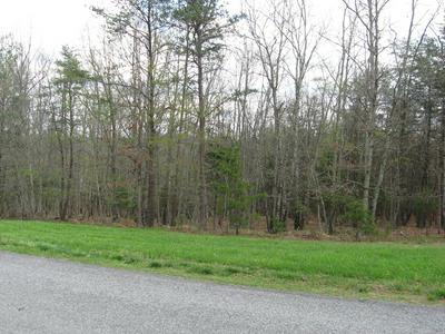 LOT 2 QUAIL HOLLOW DR, Fincastle, VA 24090 - Photo 1